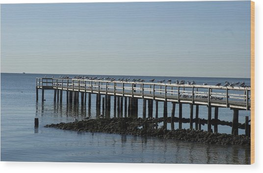 Sittin' On The Dock By The Bay Wood Print