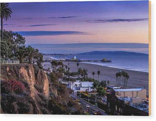 Sitting On The Fence - Santa Monica Pier Wood Print