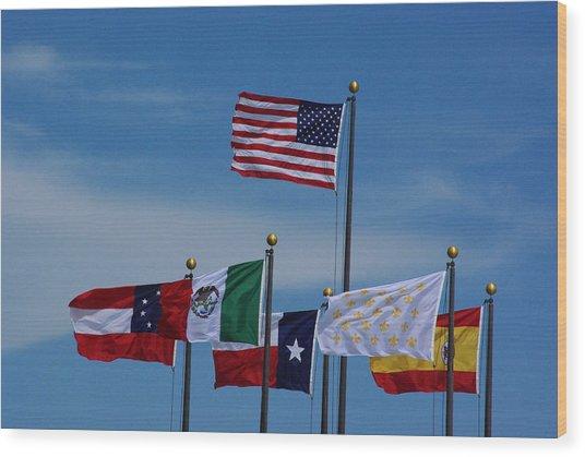 Six Flags Over Texas Wood Print