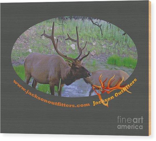 Six Point Bull Elk In Colorado Wood Print