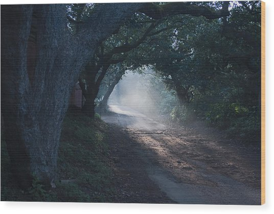 Skc 4671 Road Towards Light Wood Print