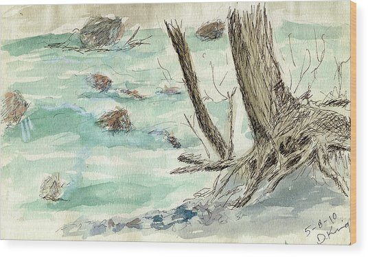 Sketchbook 001 Wood Print by David King