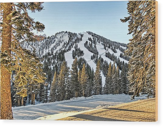 Ski Runs Wood Print
