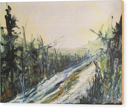 Ski Trail Wood Print by Linda King