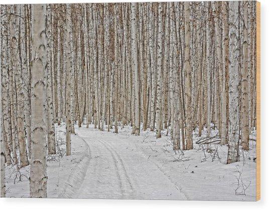 Ski Trail Wood Print