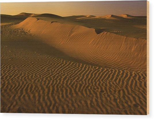 Skn 1127 The Golden Dunes Wood Print