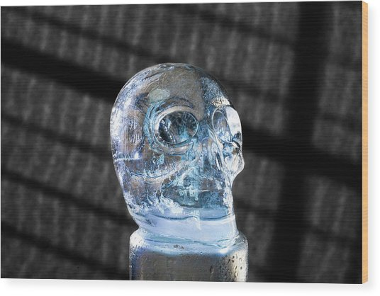 Skull Wood Print
