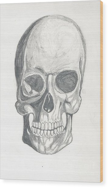 Skull Study 2 Wood Print
