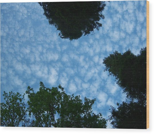 Sky Above Me Wood Print by Ken Day