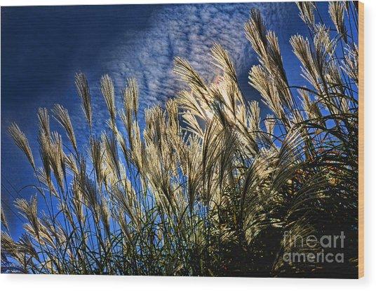 Sky Dusters Wood Print