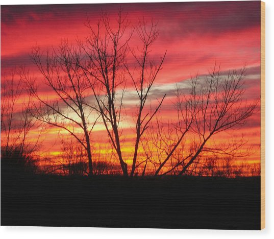 Sky Fire Wood Print by Ron Moses