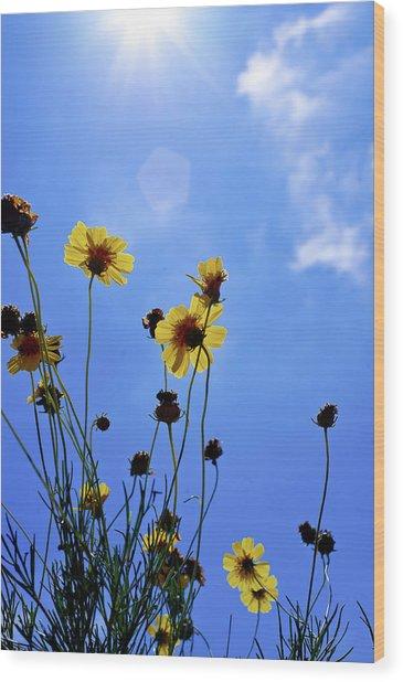Sky Flowers Wood Print
