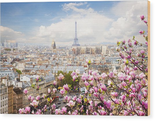 skyline of Paris with eiffel tower Wood Print