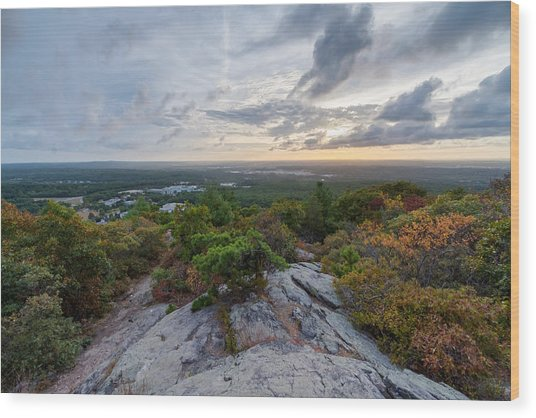 Skyline Trail Vista Wood Print
