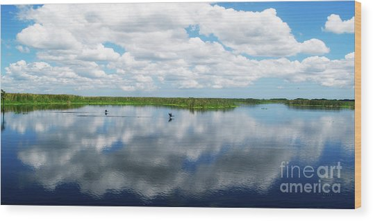 Skyscape Reflections Blue Cypress Marsh Conservation Area Near Vero Beach Florida C2 Wood Print