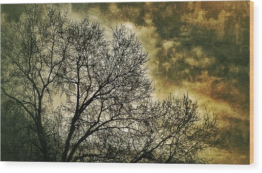 Skyward Wood Print