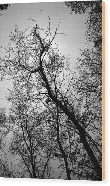 Skyward Wood Print