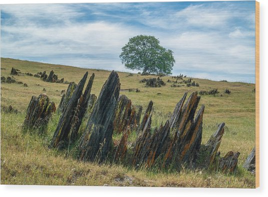 Slate Filled Meadow Wood Print