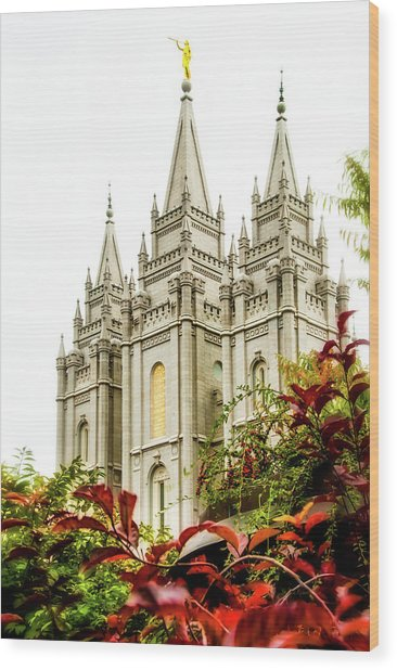 Slc Temple Angle Wood Print