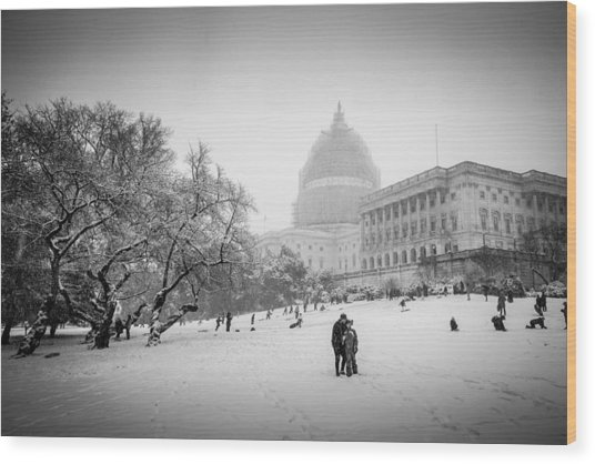 Sledding On Capitol Hill Wood Print by Robert Davis