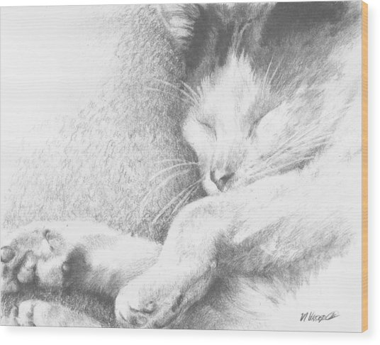 Sleeping Sadie Wood Print