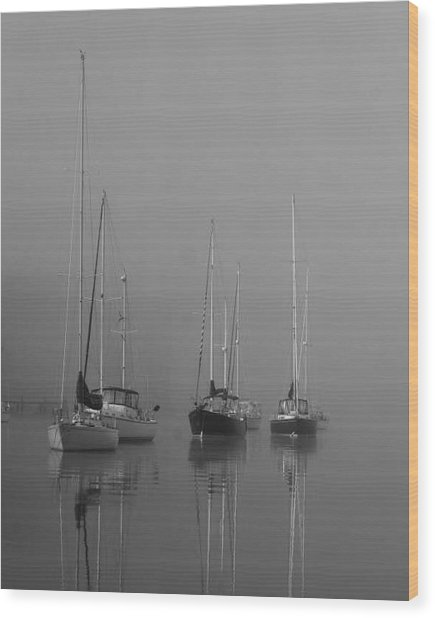 Sleeping Yachts  Wood Print by Arthur Sa
