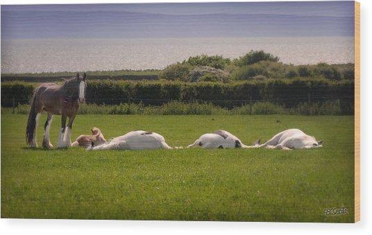 Sleepy Gypsy Afternoon By The Water Wood Print by Elizabeth Sescilla