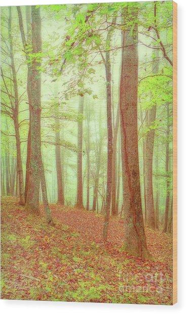 Sleepy Hollow Wood Print