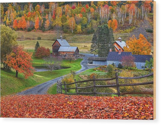 Sleepy Hollows Farm Woodstock Vermont Vt Autumn Bright Colors Wood Print