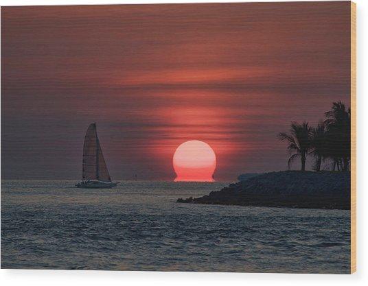 Sleepy Sun Wood Print