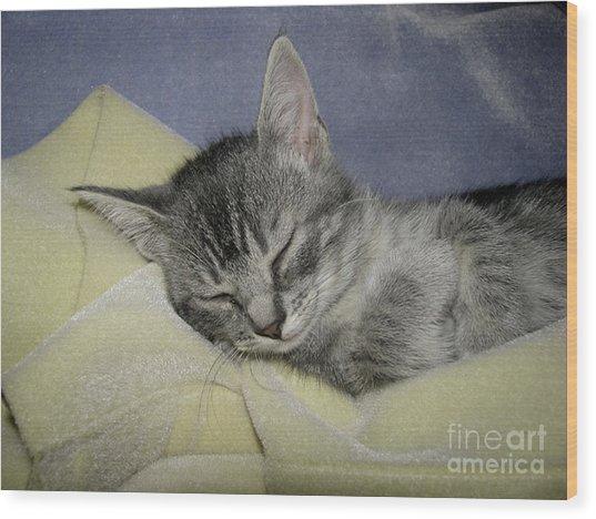 Sleepy Time Wood Print