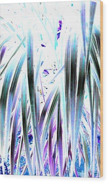 Slink Wood Print