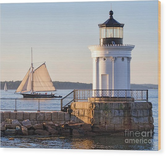 Sloop And Lighthouse, South Portland, Maine  -56170 Wood Print