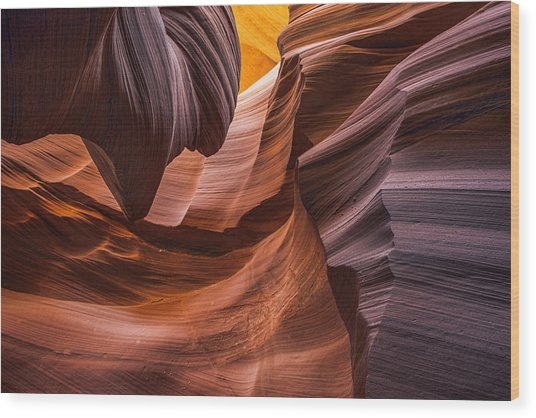 Slot Canyon Colors Wood Print by Dave Dilli
