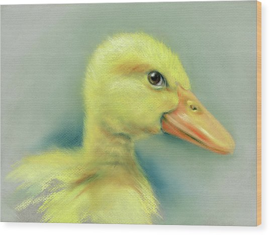 Sly Little Duckling Wood Print