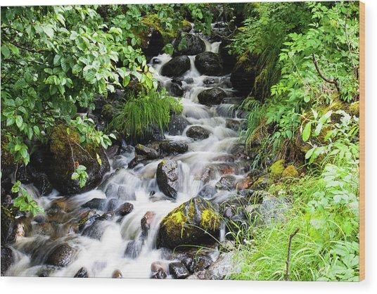 Small Alaskan Waterfall Wood Print
