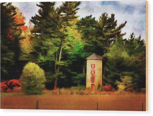 Small Autumn Silo Wood Print