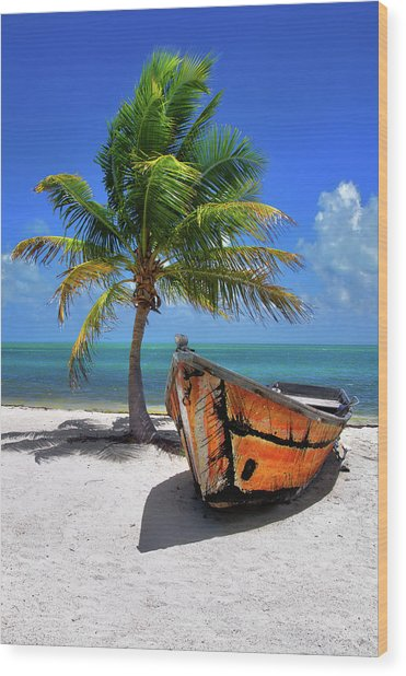 Small Boat And Palm Tree On White Sandy Beach In The Florida Keys Wood Print
