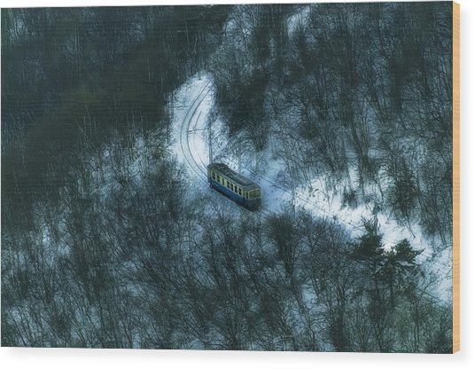 Wood Print featuring the photograph Small Casella Train Snow Landscape by Enrico Pelos