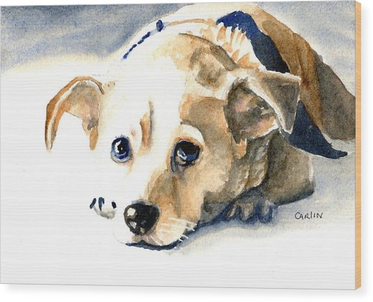 Small Dog With Tan Short Hair  Wood Print
