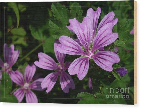 Small Mauve Flowers 6 Wood Print