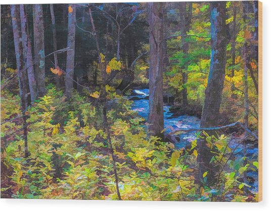 Small Stream Through Autumn Woods Wood Print