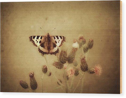 Small Tortoiseshell Wood Print