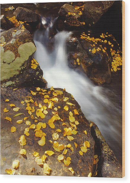 Small Waterfall In Autumn Wood Print by Douglas Pulsipher