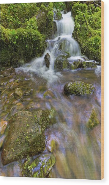 Small Waterfalls Along Wahkeena Creek Wood Print