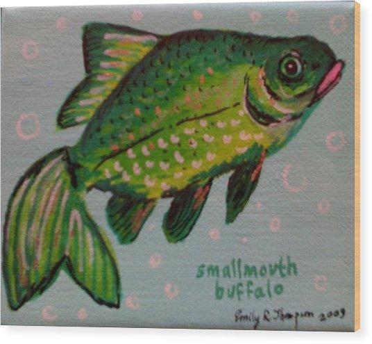 Smallmouth Buffalo Wood Print by Emily Reynolds Thompson