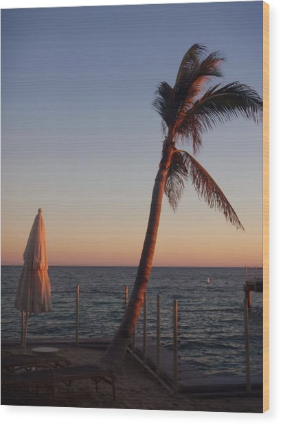 Smile With The Rising Sun Wood Print by JAMART Photography