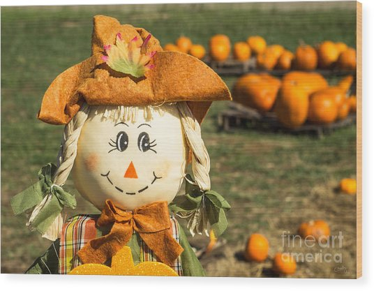 Smiling Scarecrow With Pumpkins Wood Print
