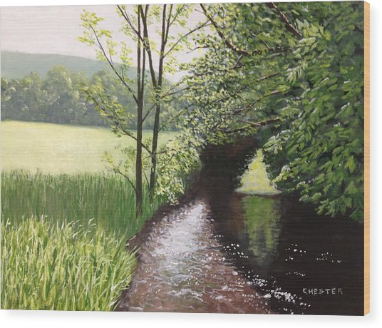 Smith Stream Wood Print