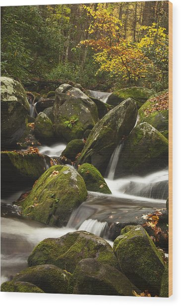 Smokies Waterfall Wood Print by Andrew Soundarajan